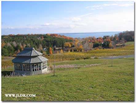 Grand Traverse Bay from a vineyard hillside