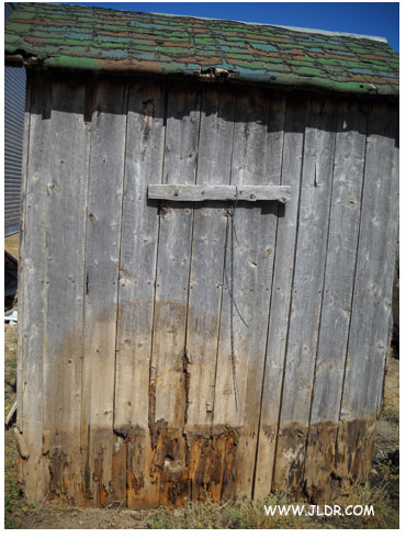Back view of the 1900's Outhouse