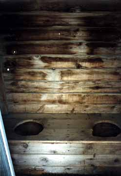 Clear View of church Outhouse Holes near Nahma Junction, Michigan