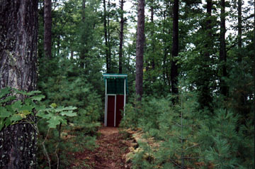 The Outhouse is Tucked Back in the Woods