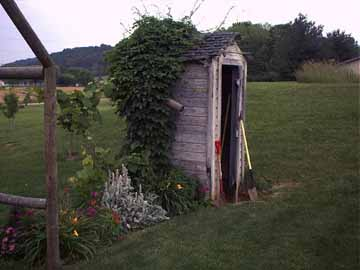 Great looking Outhouse with Ivy Vine