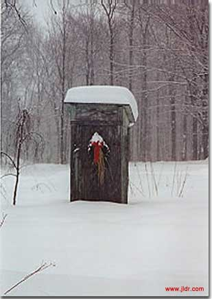 A beautiful Quebec Outhouse