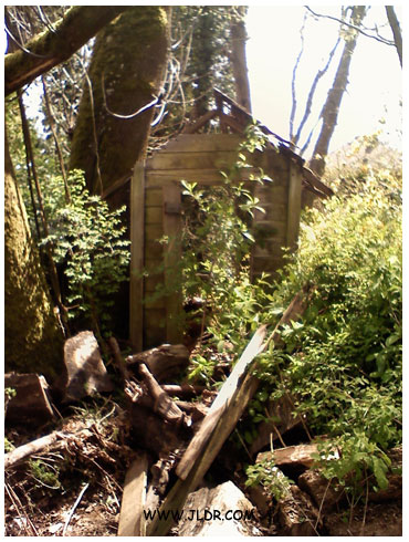 Remains of the Puyallup outhouse in its original spot