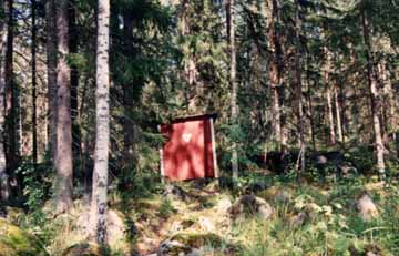 An Outhouse in the Swedish Forest